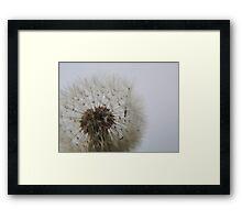 Blowing on Dandelion Seed  VRS2 Framed Print
