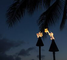 Of Tiki Torches, Palm Trees and Beach Parties by Georgia Mizuleva