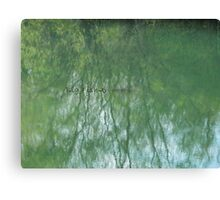 Fish in the Pond VRS2 Canvas Print