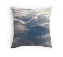Hidden Antarctica Throw Pillow