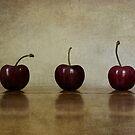 Cherries by dgugeri