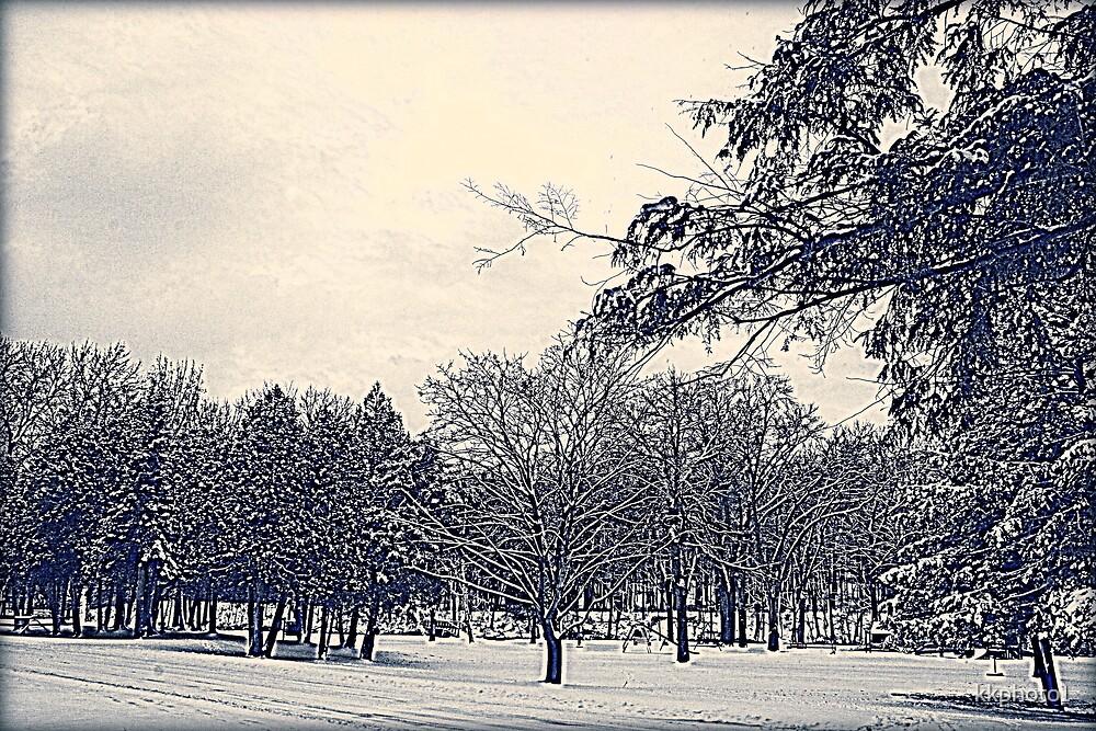 Winter Days by kkphoto1