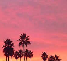 Pink Palms by seeingred13