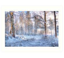 Winter in Forsheda's track I Art Print