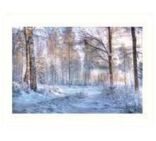 Winter in Forsheda's track I Art Print