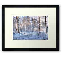 Winter in Forsheda's track I Framed Print