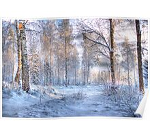 Winter in Forsheda's track I Poster