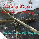 Challenge Winner - Winter Streams by quiltmaker