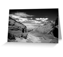 Watering Holes Canyon Greeting Card
