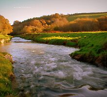 """"""" Flowing In Autumn's Colours """" by Richard Couchman"""