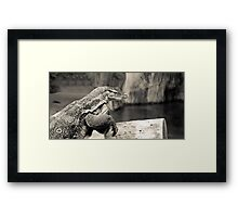 BEAUTIFUL REPTILE Framed Print