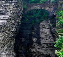 Welcome To Watkins Glen by Gene Walls