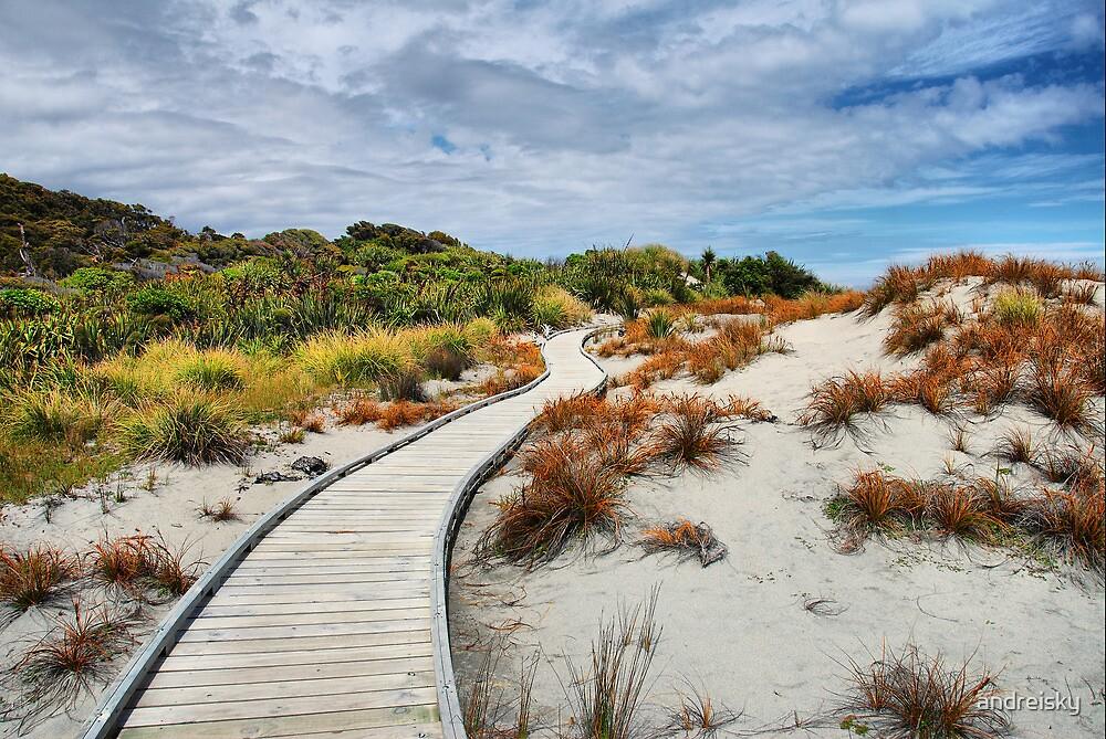 Ship Creek, Haast, West Coast, NZ by andreisky