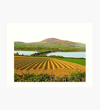 The Causeway To Inch Island Art Print