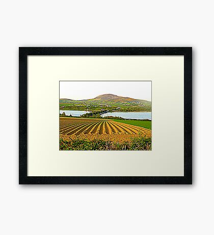 The Causeway To Inch Island Framed Print