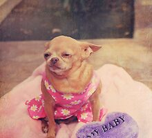 My Baby by Laurie Search