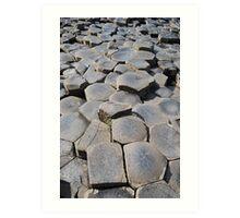 Stepping Stones, 2012 Art Print