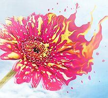 Flower Splash by Hannah Foley