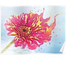Flower Splash Poster
