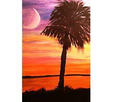 Under Heaven's Skies - South Carolina Style Photographic Print