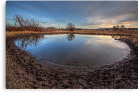 Natures Roundabout by Bob Larson