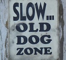 Slow - Old Dog Zone by © Betty E Duncan ~ Blue Mountain Blessings Photography
