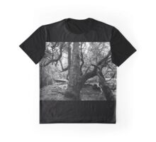 Pine Valley, Tasmania Graphic T-Shirt