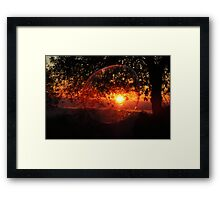 One Tree At A Time... Framed Print