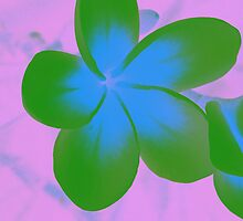 Green Plumeria  by emcreates
