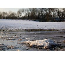Ice in a farmers field Photographic Print