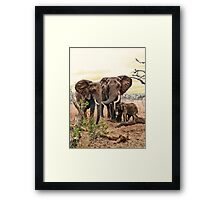 Family bond Framed Print