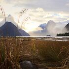 Milford Sound at sunset by Allyeska