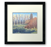 Illuminated Trees Framed Print