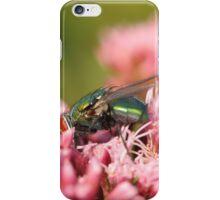 bluebottle on pink flower iPhone Case/Skin