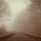 Into The Fog by Tim Mannle