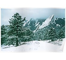 Bluebell Road And The Flatirons Poster