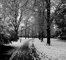queens park loughborough by cmlitchfield