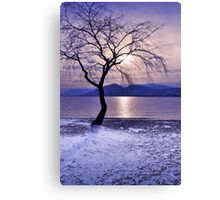 Winter Light at Manitou Beach Canvas Print