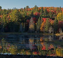Algonquin Park, Northern Ontario by creativegenious