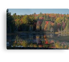 Algonquin Park, Northern Ontario Metal Print