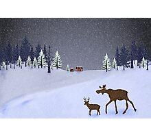 Snow beauty Photographic Print