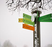 Directions by andrea-ioana