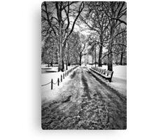 Winter Morning in the Boston Public Garden Canvas Print