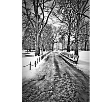 Winter Morning in the Boston Public Garden Photographic Print