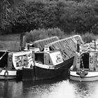 Narrowboats at rest by elsiebarge
