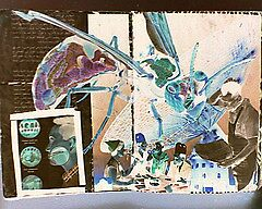 Giant Insect Collage by EverittDunn