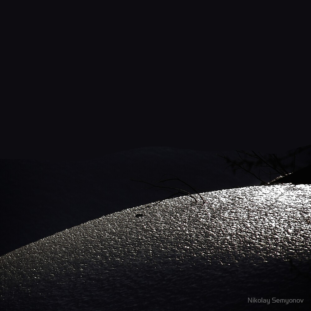 skin of winter two by Nikolay Semyonov