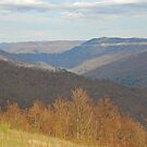 Black Mountain - Kentucky by Mary Carol Story