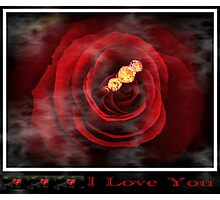 Valentine rose challenge Photographic Print
