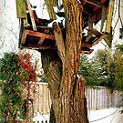 Broken Tree House by silentstead
